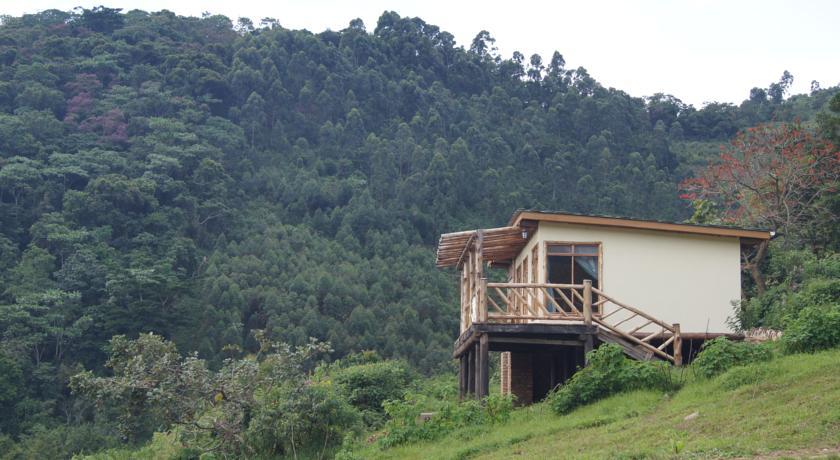 Hotels and lodges-bwindi-buhoma